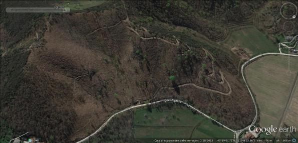 Colli Euganei, il bosco (Via Regazzoni) nella seconda metà 2015 (da Google Earth)