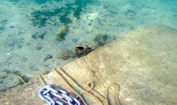 Olbia, Punta Asfodeli, Nacchere danneggiate (marzo 2016)