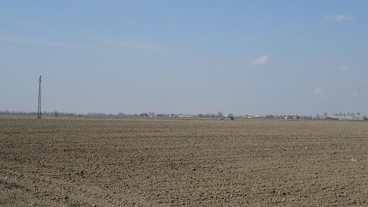 """campagna nel Padovano. Un """"deserto"""" sul piano della biodiversità"""