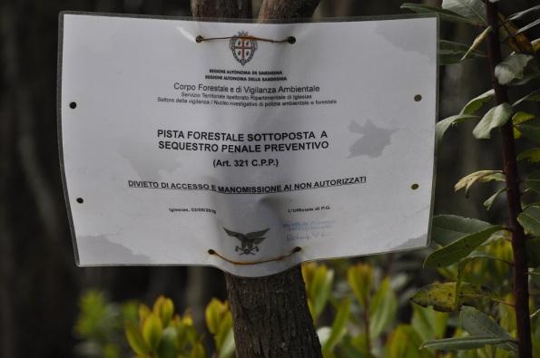 Domus novas, Foresta demaniale del Marganai, loc. Isteri, strada forestale sequestrata (maggio 2016)
