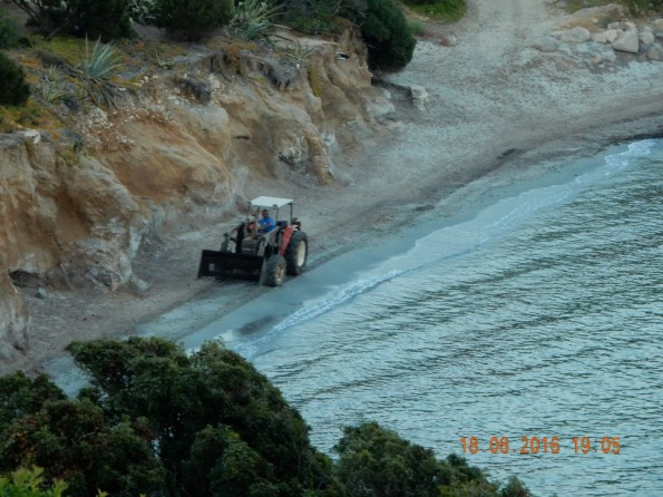 Villasimius, Porto Luna, ruspa sulla spiaggia, 18 agosto 2016