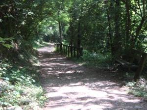sentiero sulle sponde del Fiume Brenta