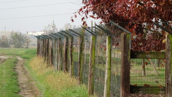 Veggiano (PD), esempio di metodo ecologico: recinzione anti-intrusione predatori realizzata da privati a protezione di un gran numero di animali da cortile. Nessun miracolo dell'ingegneria è servito, solo un piccolo accorgimento!