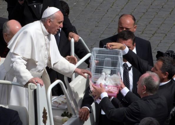 Papa Francesco libera due piccioni bianchi durante una cerimonia religiosa
