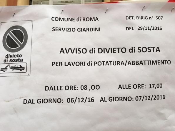 Roma, Via Gulli, avviso per divieto di sosta finalizzato a interventi di potatura/taglio alberi