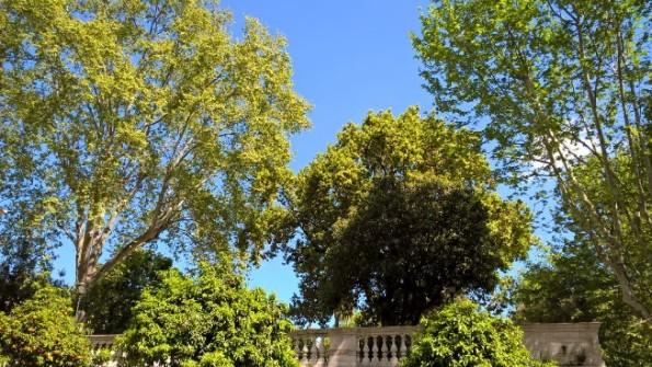Roma, giardino pubblico (Rione Quirinale)