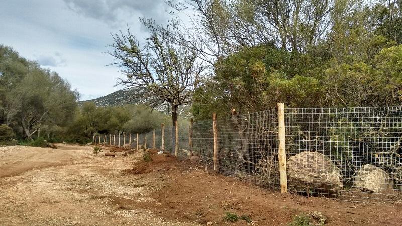 Baunei, Golgo, recinzione (marzo 2018) - Copia