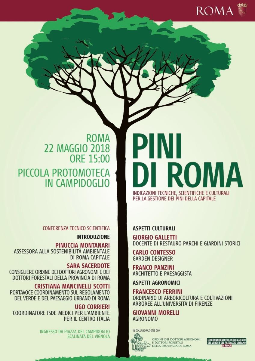 conferenza su I Pini di Roma