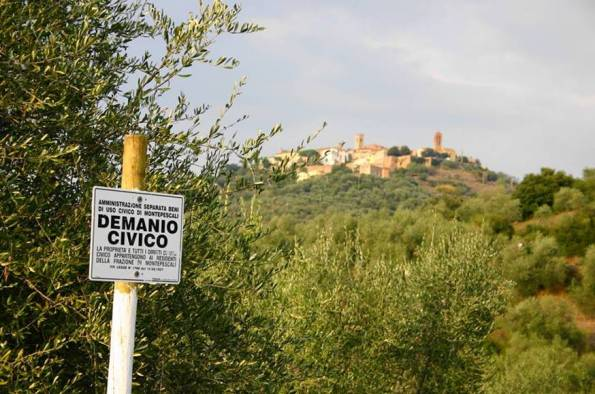demanio civico Montepescali